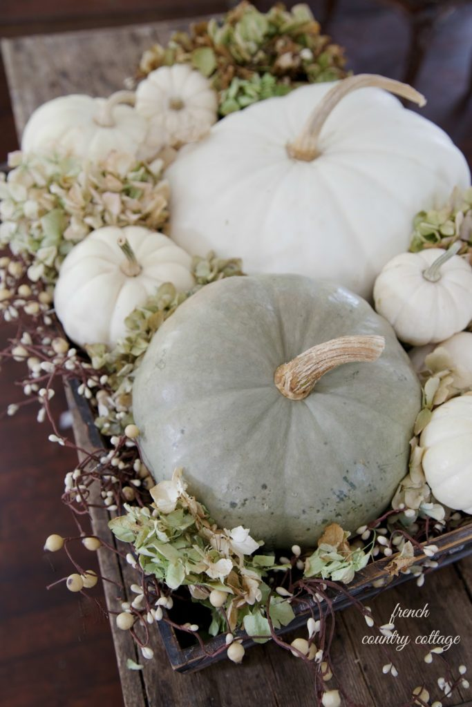 Autumn vignette Pumpkins