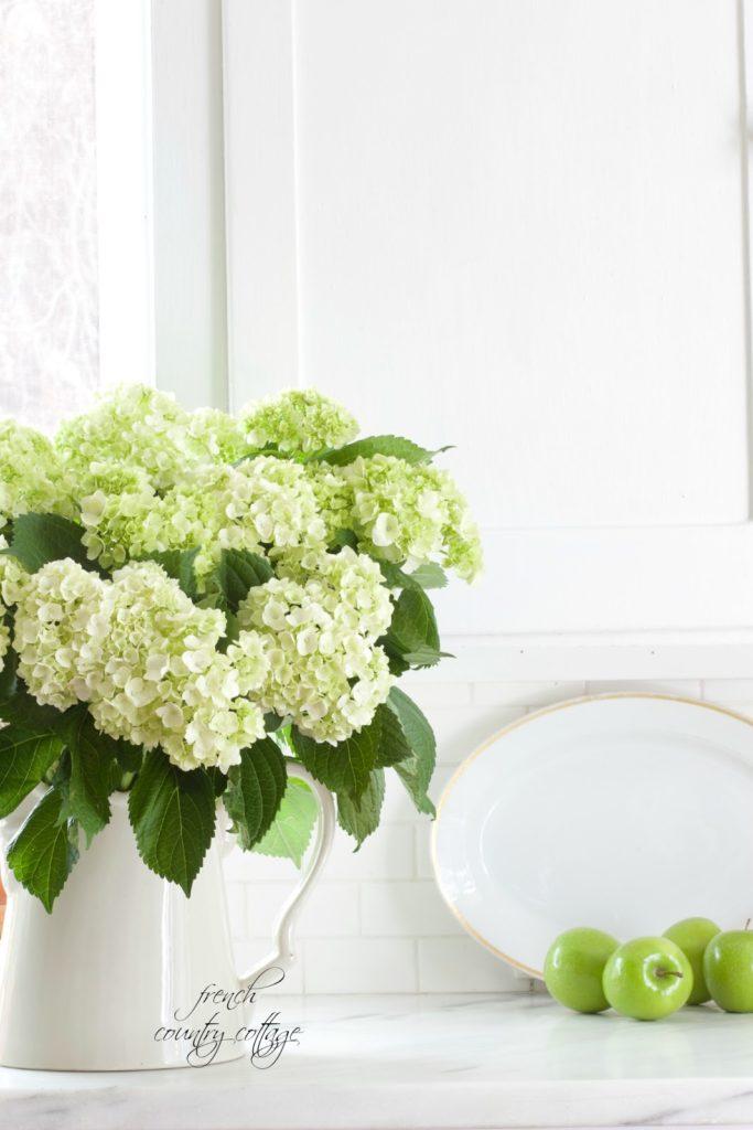 hydrangeas, fresh, kitchen, sink, alum