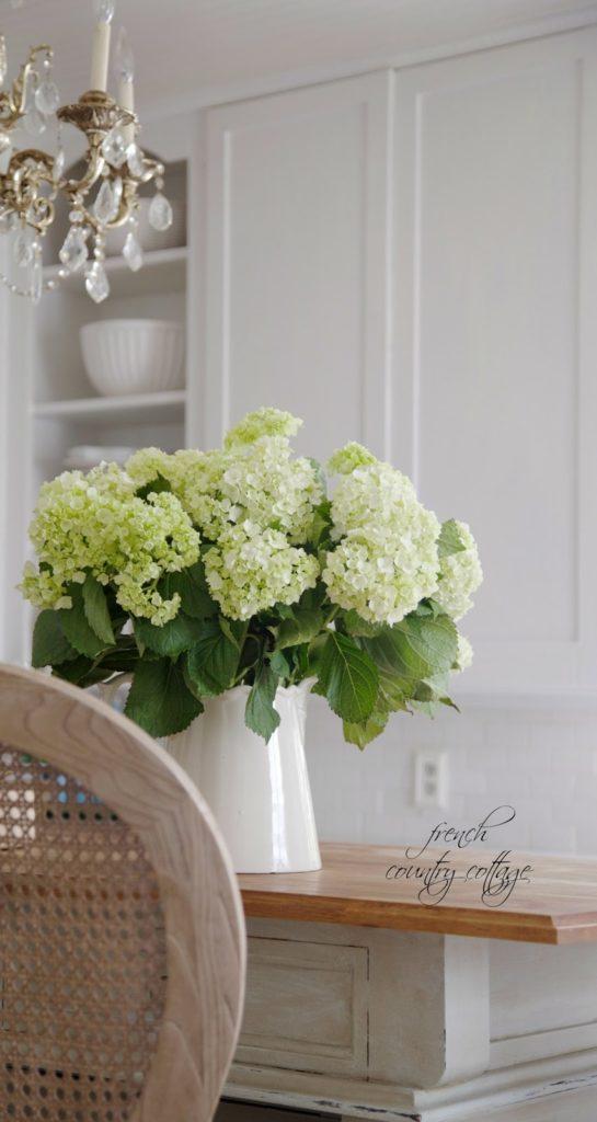 hydrangeas, flowers, alum
