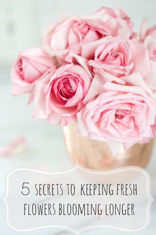 fresh flowers bloom longer 5 secrets
