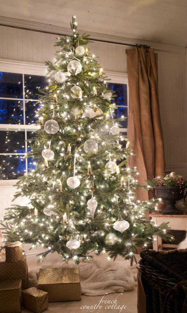 Christmas tree in front of window