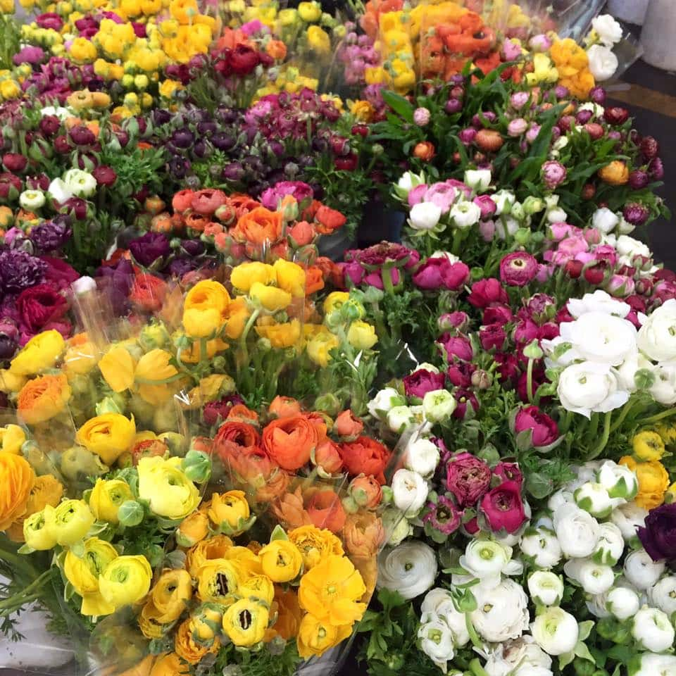 Colorful ranunculus gathered up at SF Flower Market