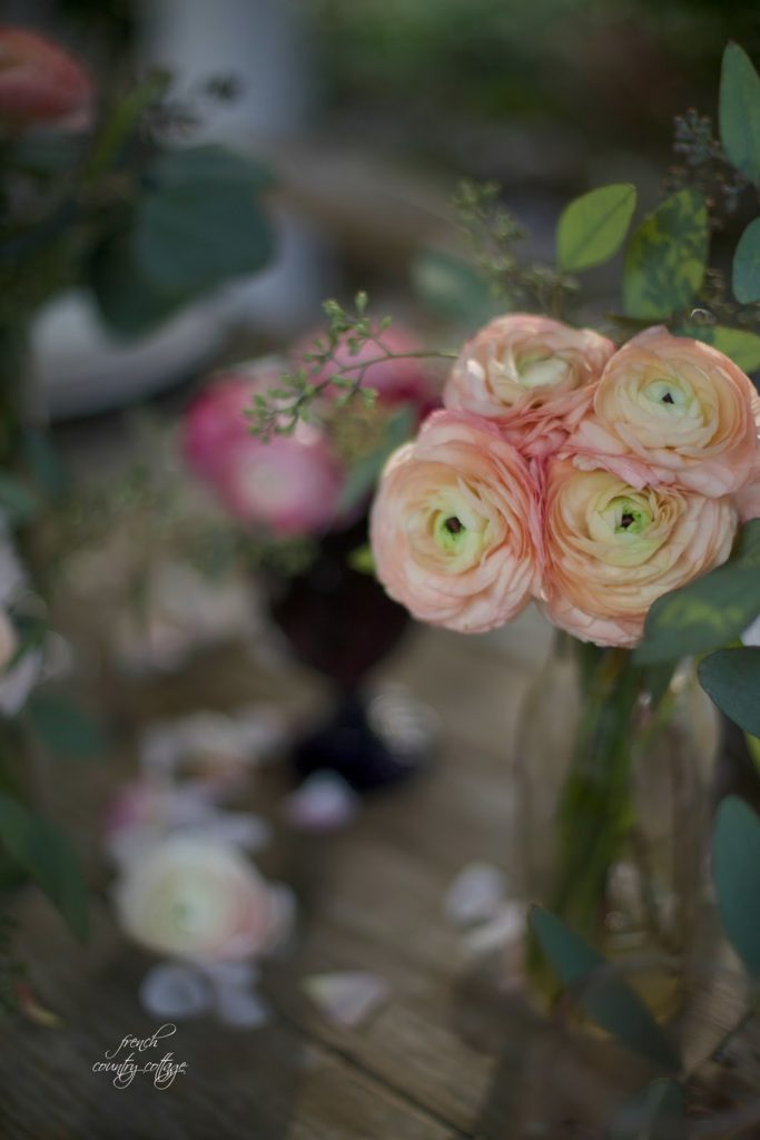 Peach colored ranunculus on table