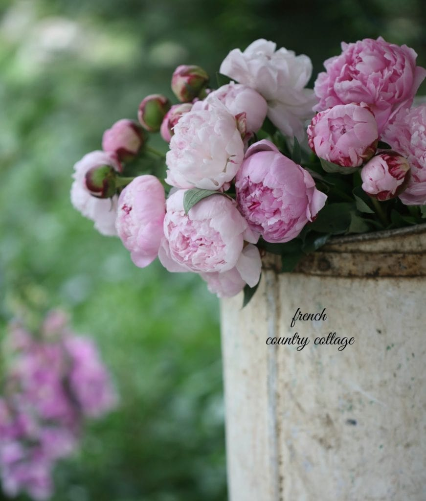 antique painted grape harvesting bucket with peonies