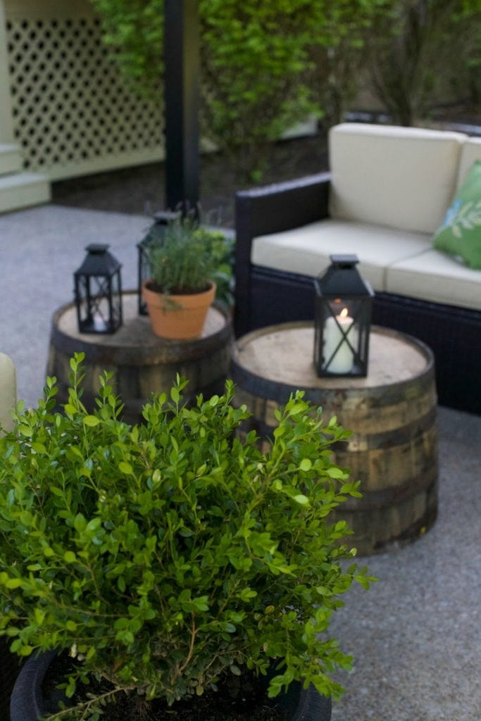 Plants and whiskey barrels on patio