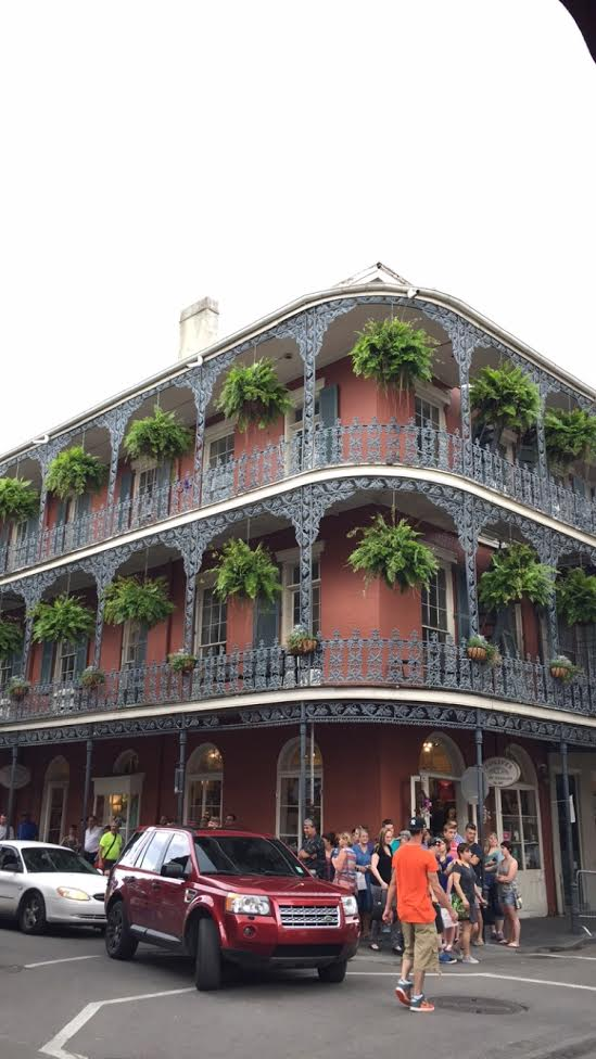 Ferns and metal railings on brick building in New Orleans