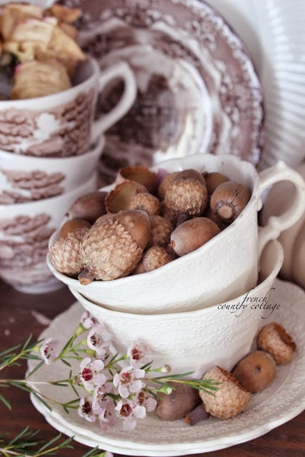 brown transferware white teacup and acorns
