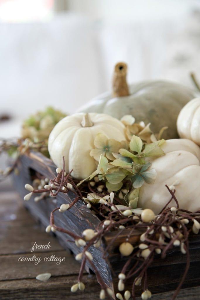 autumn vignette of pumpkins