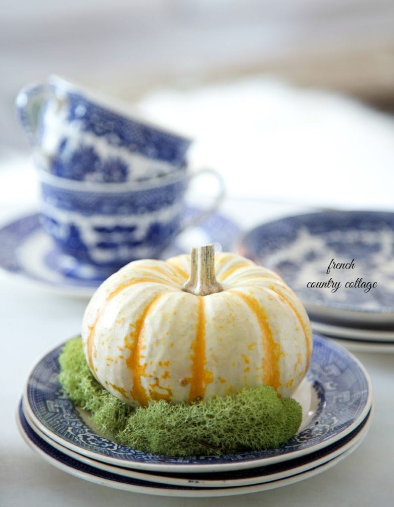 autumn vignette pumpkin on blue and white plate