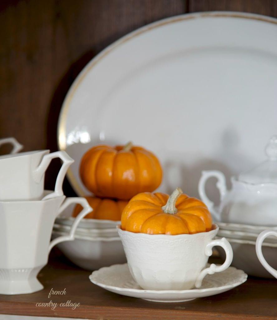 pumpkin in white teacup in cupboard
