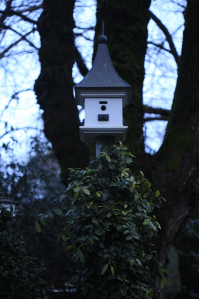 white birdhouse on pole