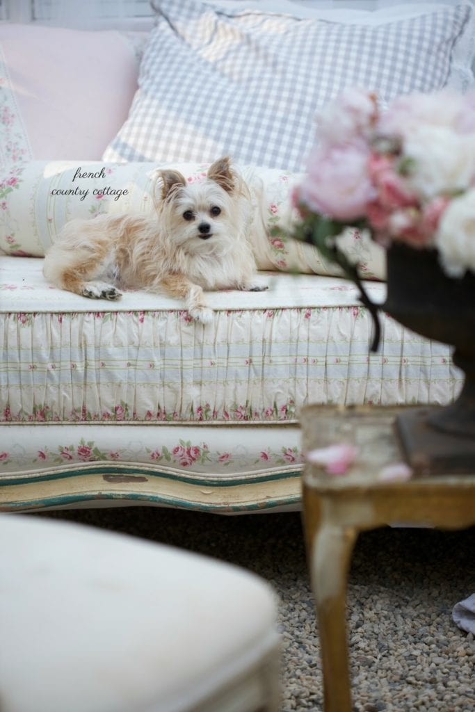 french cottage style daybed with dog