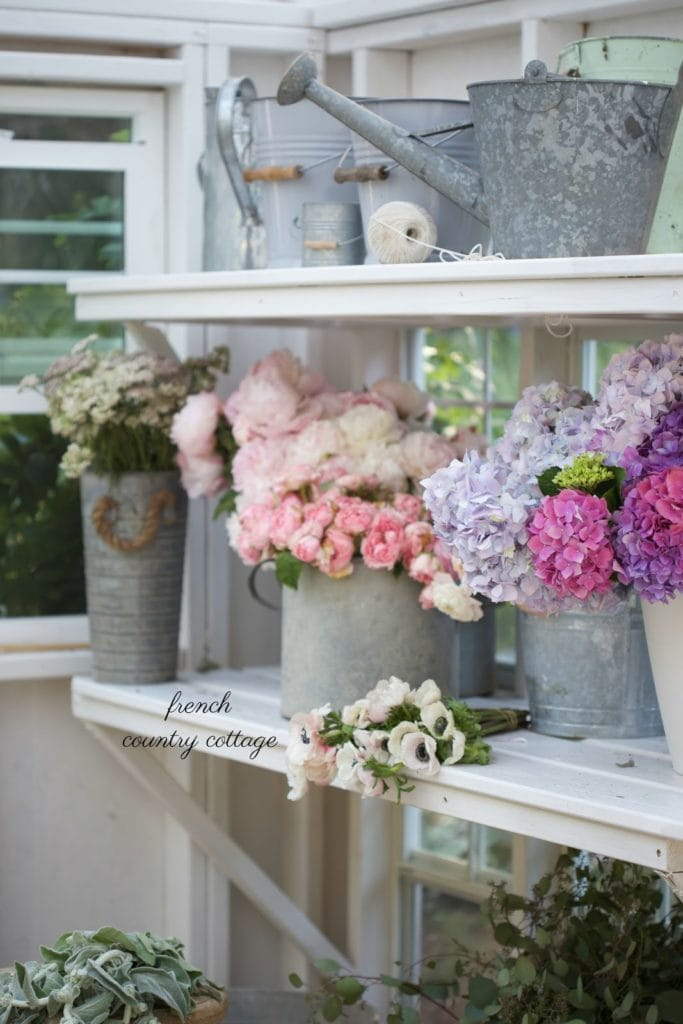 buckets, watering cans and flowers in greenhouse