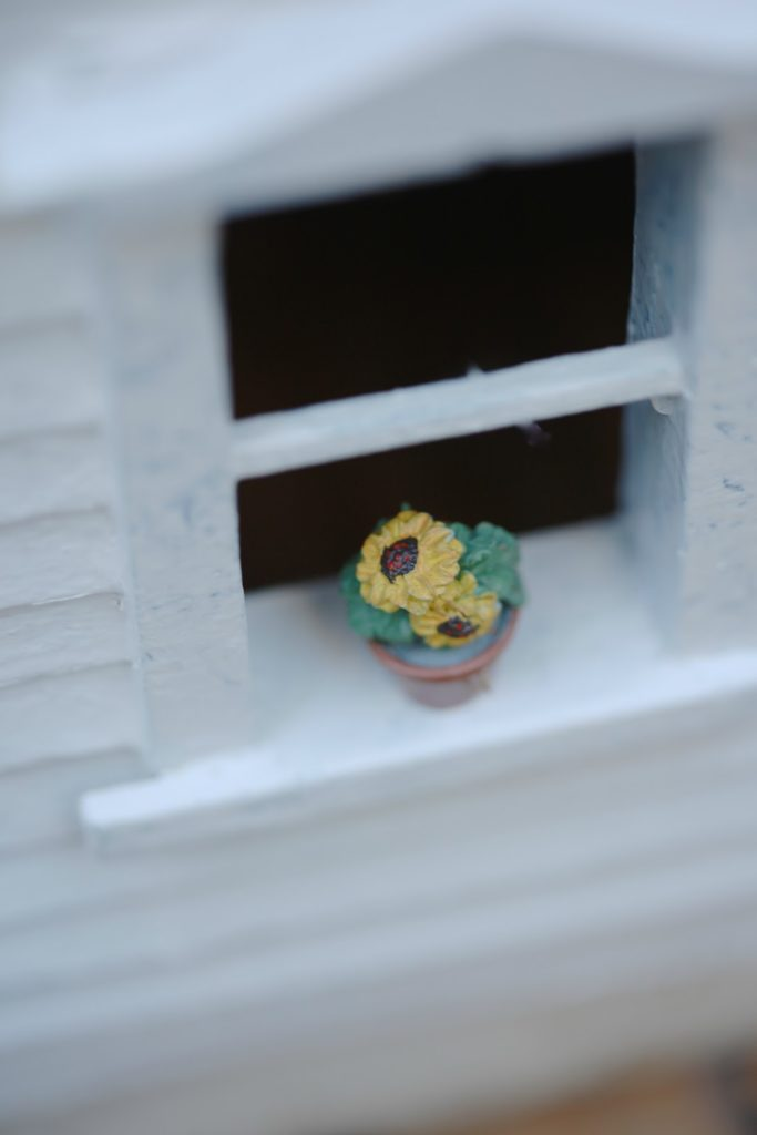 flower pot on window sill