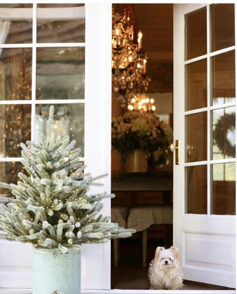 Sweet Pea dog in front of French Country Cottage French doors