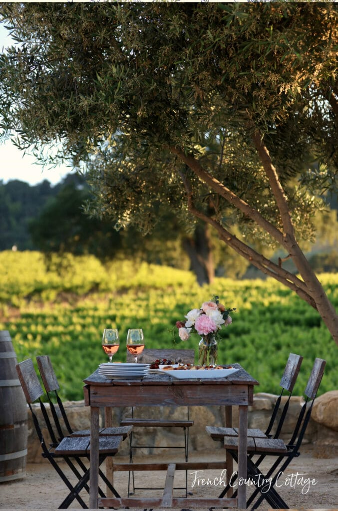 Bistro table in vineyard