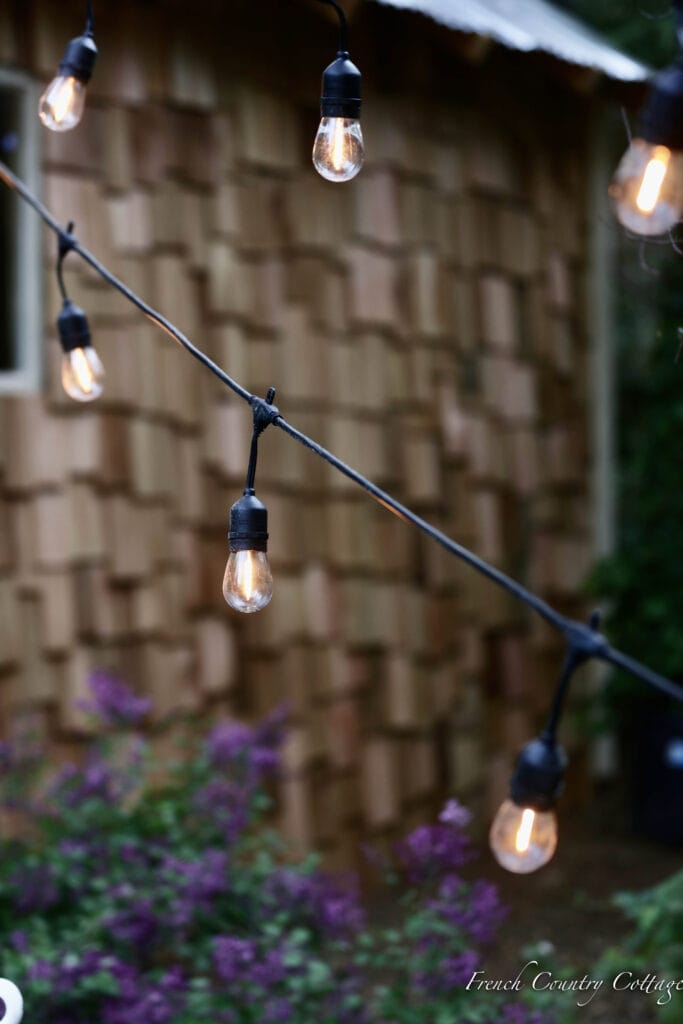 String Lights in garden