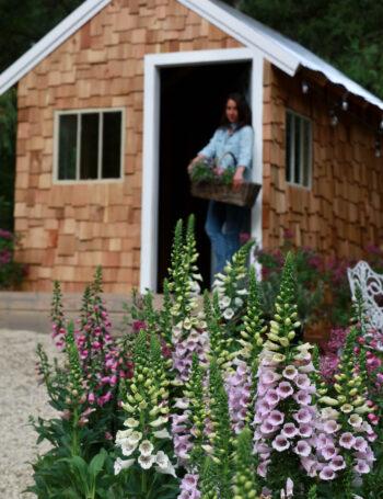 English cottage style garden