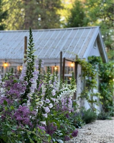 French Country Cottage Greenhouse garden