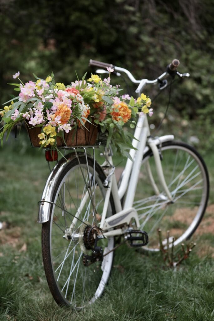 beach bike with flowers on the back