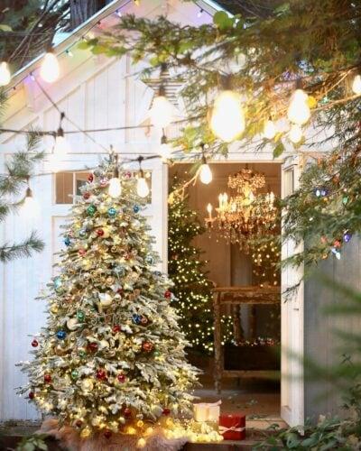Christmas tree by barn