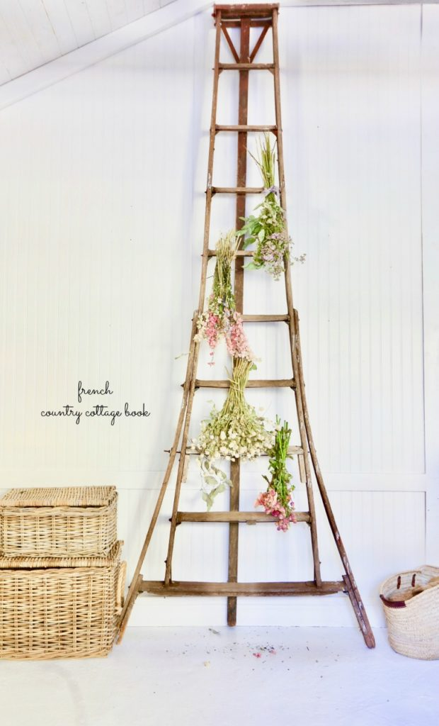 old ladder with flowers