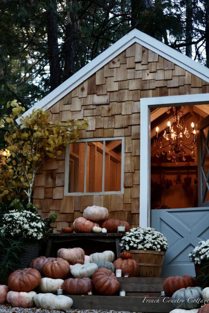 pumpkins on potting shed steps
